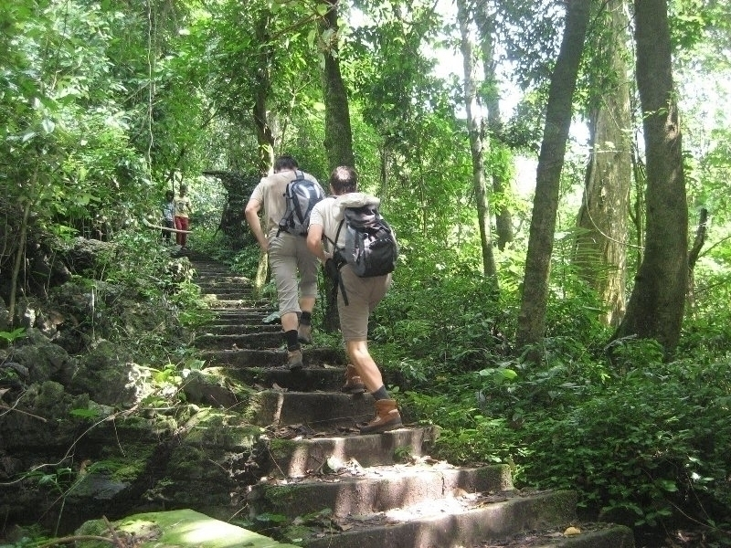 cuc-phuong-national-park-1
