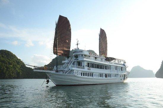 v-spirit-day-cruise